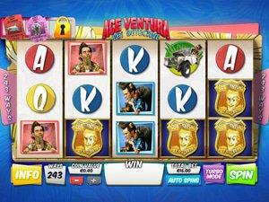 Ace Ventura - apercu