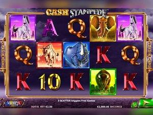 Cash Stampede - apercu