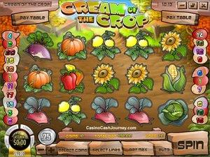 Cream of the Crop - apercu