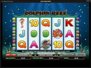 Dolphin Reef - apercu