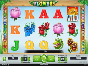 Flowers - apercu