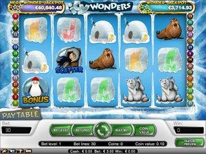 Icy Wonders - apercu