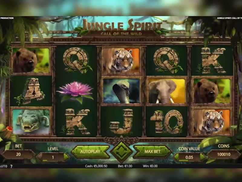 Jouez aux Machines à Sous Wild Spirit en Ligne sur Casino.com Suisse
