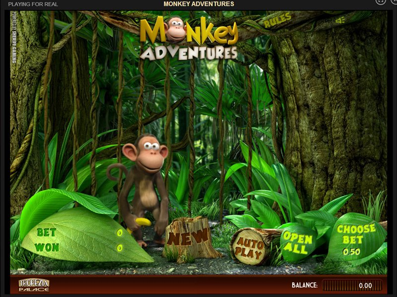 Monkey Adventures - apercu