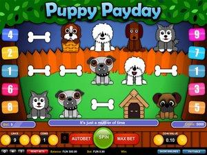 Puppy Payday - apercu