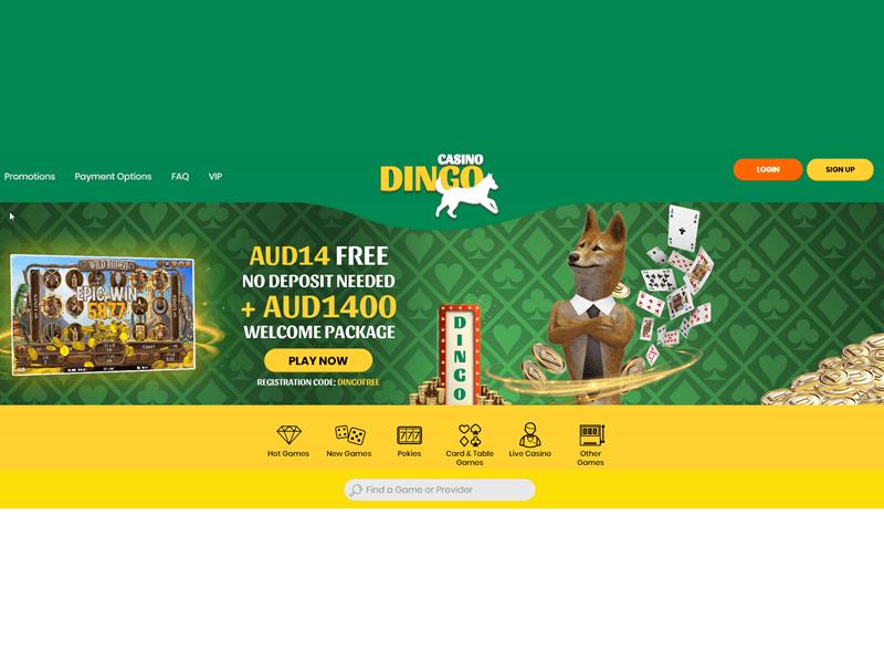 Dingo - apercu de site
