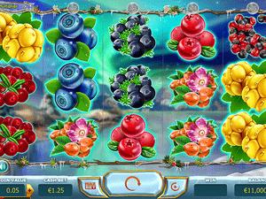 Winter Berries - apercu