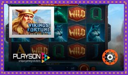 Les casinos Playson présentent Vikings Fortune Hold and Win