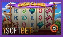 iSoftBet dévoile la nouvelle machine à sous Cash Camel