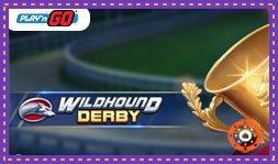 Play'N Go dévoile le jeu de casino Wildhound Derby