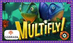 Présentation du jeu de casino en ligne Multifly