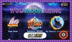 Présentation du jeu de casino Wolf Moon Rising